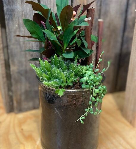 Plantearrangement
